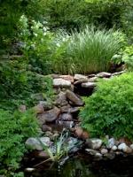 water-garden-dbg-lah-2711