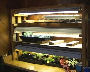 plant-lights-lah