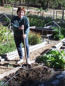 dig-soil-home-plh-3