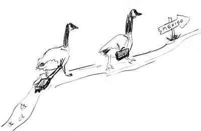 hiking-geese001