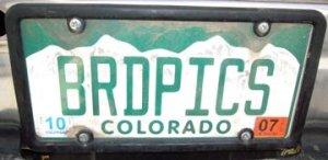 brdpics-logo
