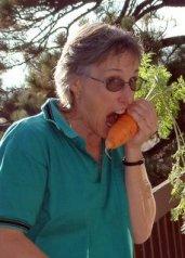 Carrot-ALM