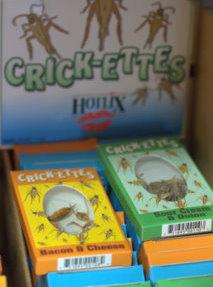 crick-ettes-boxes_butterflypavilion-co_lah_9701-1