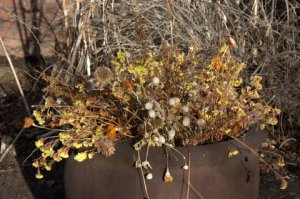 containers-in-winter_dbg_10200118_lah_6913