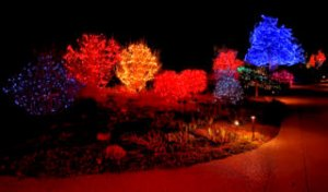 lights_dbg_lah_5723-1