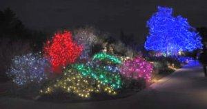 lights_dbg_lah_5729-1