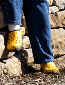fashionable-gardening-shoes-carnegielib-16apr07-lah-754