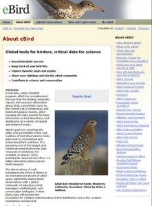 ebird-about
