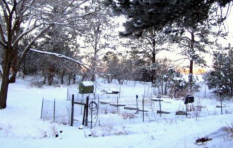 snow-at-home_lah_762