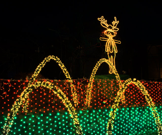 xmas-lights_colospgs_lah_5835