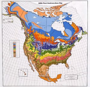 usda-zone-map
