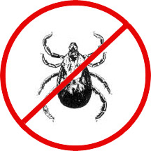 no-ticks