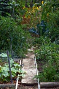 tyndale-garden-colospgs-co_lah_2841