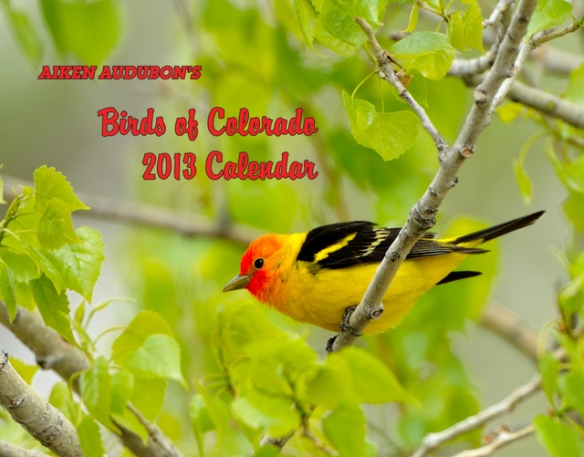 cover-with-text-western-tanager-small