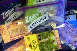 Seeds in baggies_LAH_6137