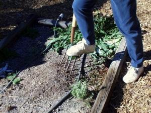 Fork soil @home PLH 1