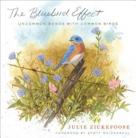 The Bluebird Effect, by Julie Zickefoose