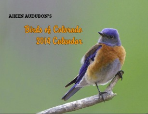 Calender cover