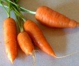 Carrots_home_20091103_LAH_5355