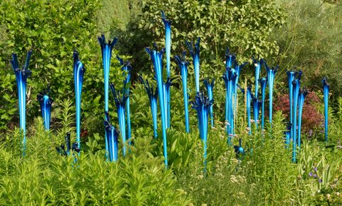 Chihuly_DBG-CO_LAH_0162-001