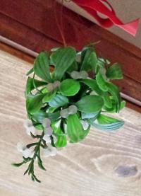 Mistletoe plastic-001