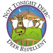 not tonight deer
