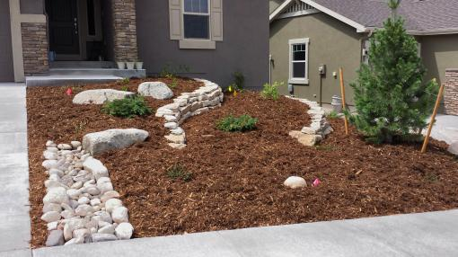 front yard 2015-08-07 11.27.53