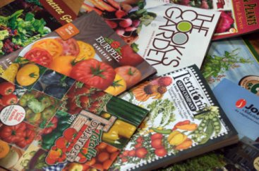 Seed catalogs_LAH_2733