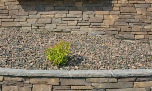 Rock mulch_COS_LAH_7745