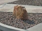 Surface boulder_COS_LAH_7742
