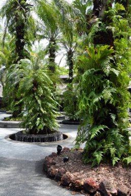 botanicgardens-singapore_lah_7427