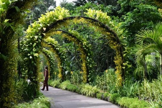 botanicgardens-singapore_lah_7736