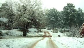 2009-04-12-easter-morning-snow-004