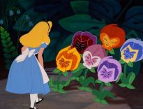 alice-with-pansies