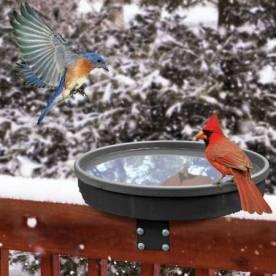 heated-birdbath-3