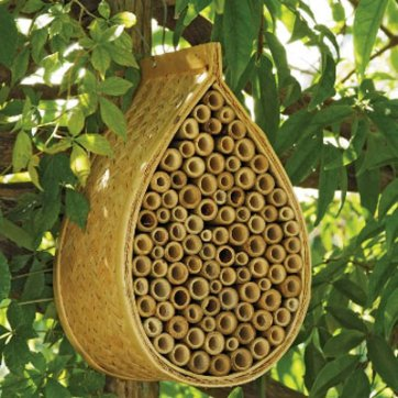 mason-bee-house-this-old-house