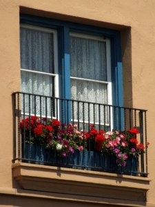 Flowers on balcony @SantaFeNM 2008jun28LAH 116