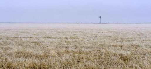 Windmill in fog_ElPasoCoCO_20100307_LAH_9557
