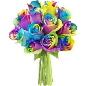 rainbow roses walmart