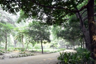 Lodhi Gardens-NewDelhi-India_LAH_9940