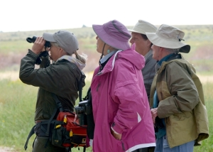 Aiken birders_ChicoBasinRanch-CO_LAH_2825-001
