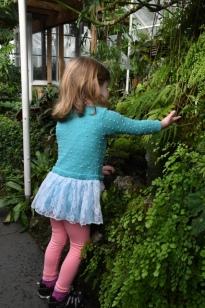 Conservatory - VolunteerPark-Seattle-WA_LAH_0415