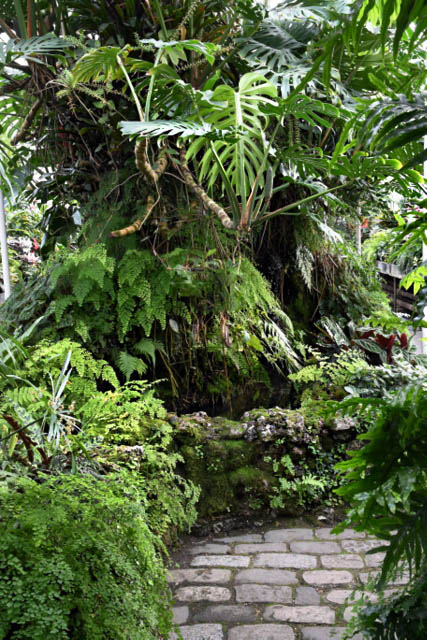 Conservatory - VolunteerPark-Seattle-WA_LAH_0465