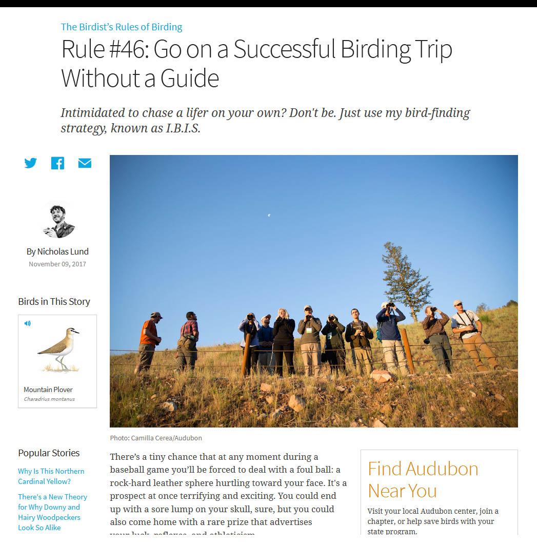 Birder's Rules screen grab