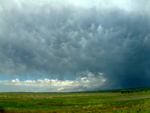 Convection cells in approaching storm, Ramah SWA, CO
