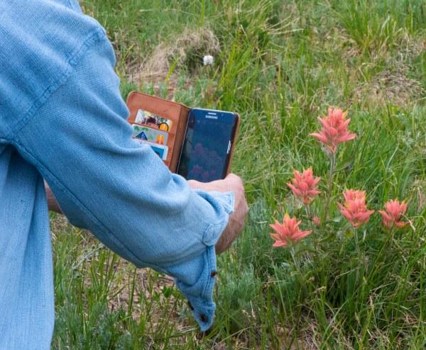 Pete photographing Paintbrush_GuanellaPass-CO_LAH_0026