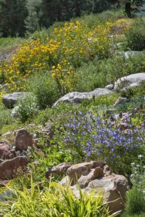 YampaRiverBotanicPark-SteamboatSprings-CO_LAH_6364r