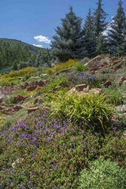 YampaRiverBotanicPark-SteamboatSprings-CO_LAH_6366r