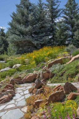 YampaRiverBotanicPark-SteamboatSprings-CO_LAH_6367r