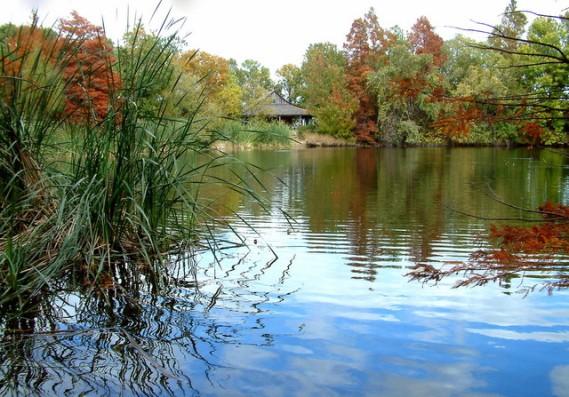 San Antonio Botanic Gardens_DSCF0691